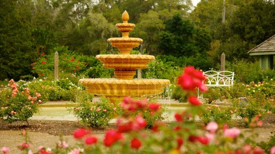 22724-harry-p-leu-gardens