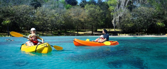 salt-springs-kayaking-e1380351965113