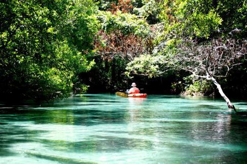 weeki-wachee_contest_lisa-tighe_weeki-wachee-springs-state-park